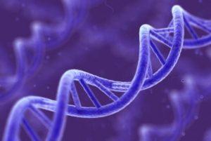 Древняя письменность – основа нашей ДНК.